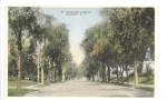 St. George Ave. going south towards Central early 1900's